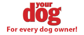 Your Dog Logo