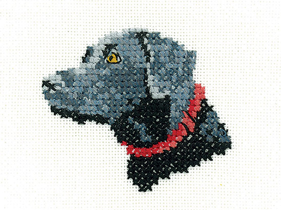 Win one of five a Black Labrador cross-stitch kits from Heritage Crafts!