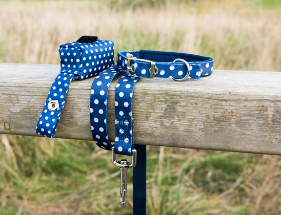 Win a blue Polka Dot collar, lead and poop bag holder from Dotcomgiftshop!