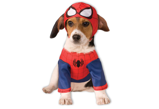 Win a Spiderman costume for your dog from Rubies UK!