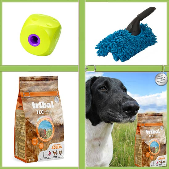 Win a bag of TLC dog food PLUS a paw cleaner and food cube!