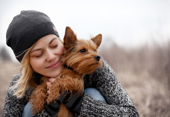 10 traits that make dogs irresistable