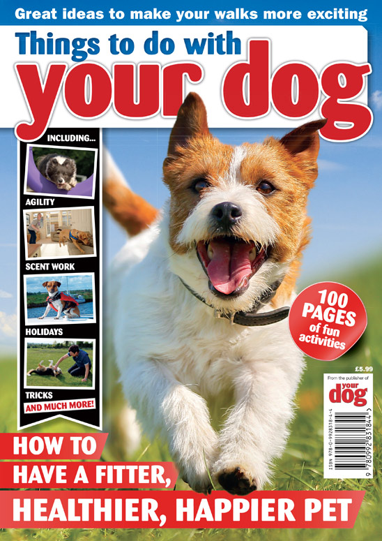 Things to do with your dog - out now!