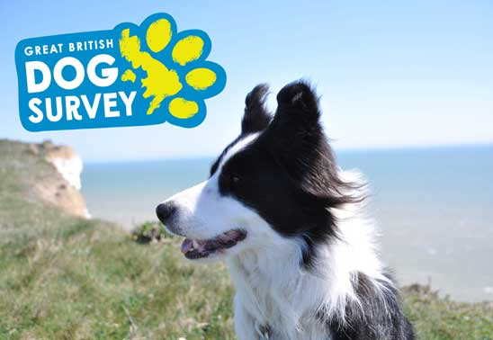 Great British Dog Survey