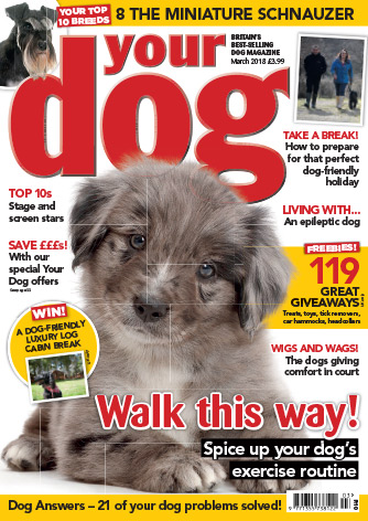 Your Dog current issue