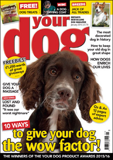 Your Dog January 2015